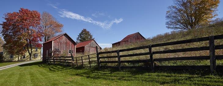 Manassas, VA landscape